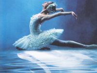 swan_lake_featured_image